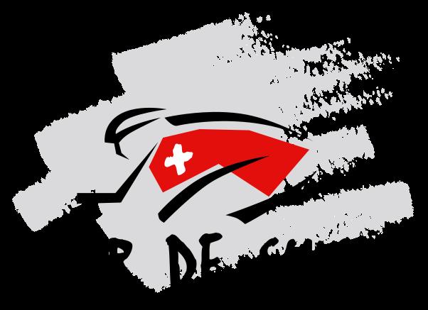 602px-Logo_Tour_de_Suisse.svg