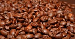 Kaffeebohnen_250px