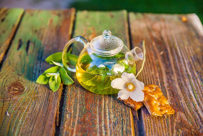 Teekanne-Rooibos-Tee